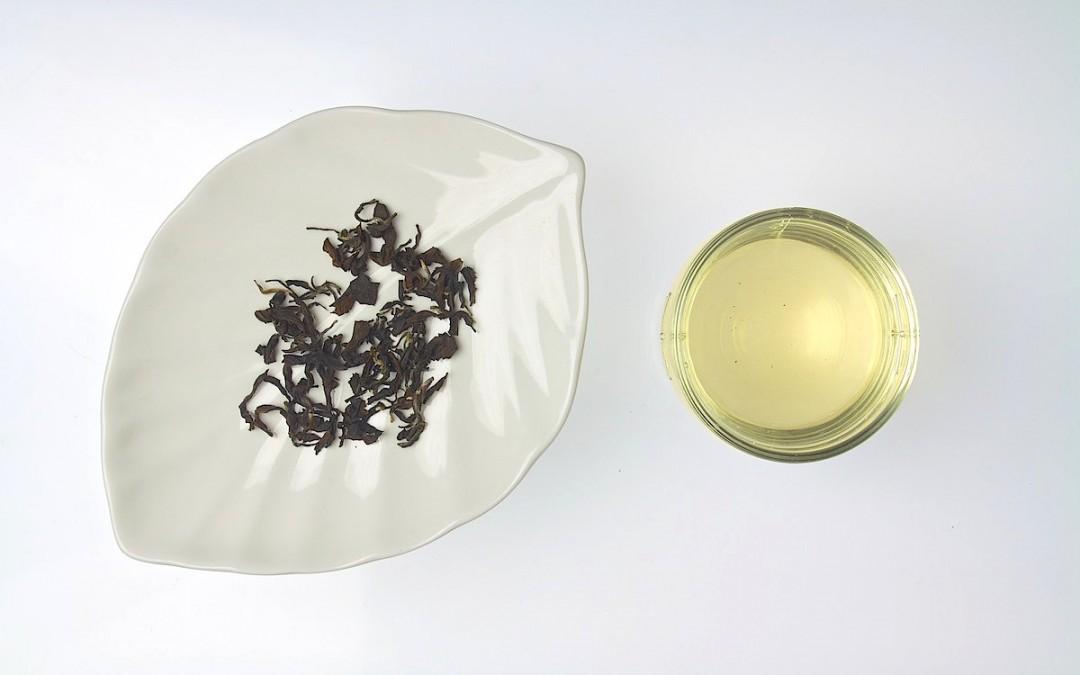 Formosa Jadespirale des Frühlings